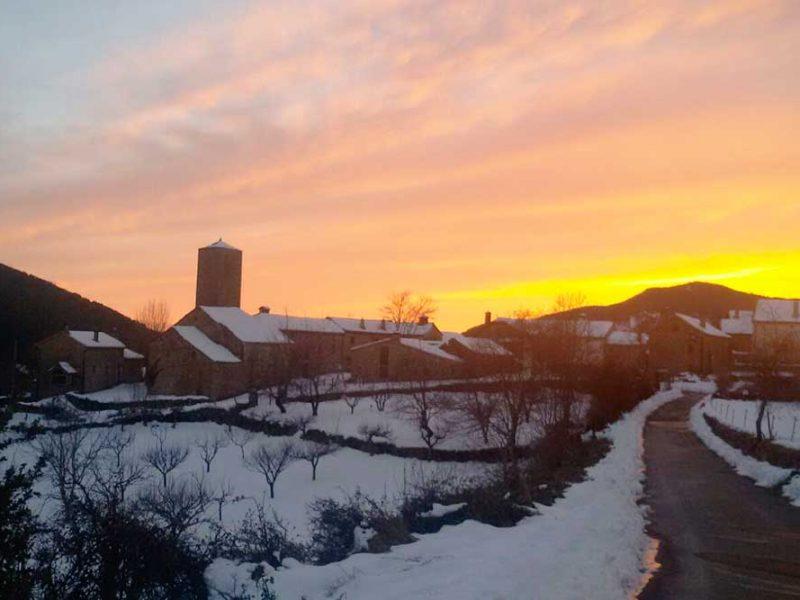 Barbenuta en invierno